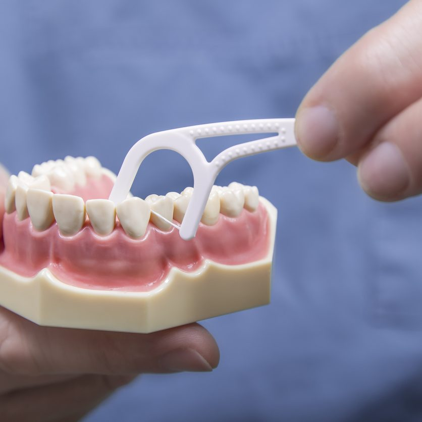 Close up dental instructor hands demonstrating how to clean in between teeth with floss on model of human gums